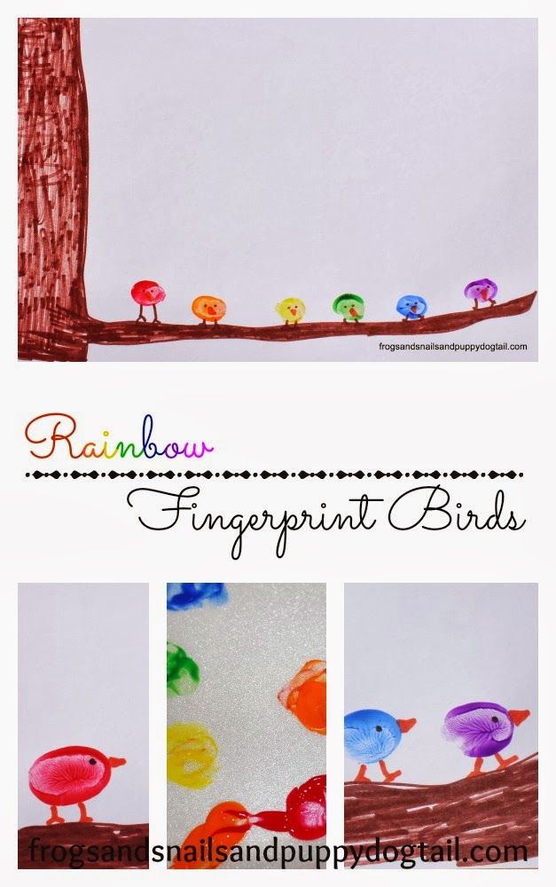 Rainbow Fingerprint Birds
