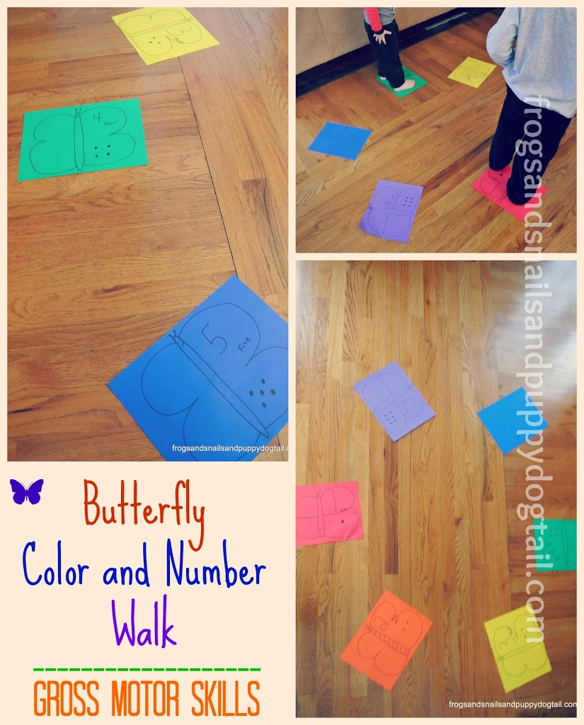 butterfly color and number walk gross motor skills fspdt