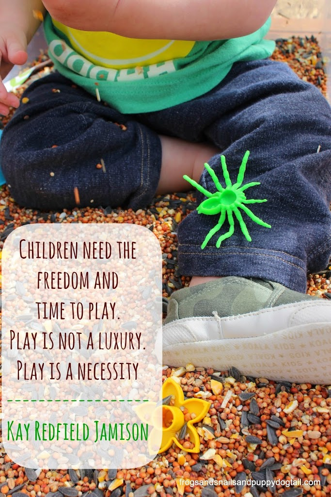 Children need the freedom and time to play. Play is not a luxury. Play is a necessity~ Kay Redfield Jamison