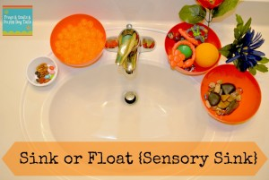 Sink or Float Sensory Sink { learning activity for the kids}