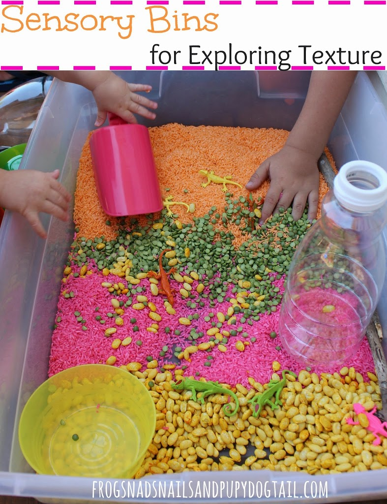 Sensory Bins for Exploring Texture