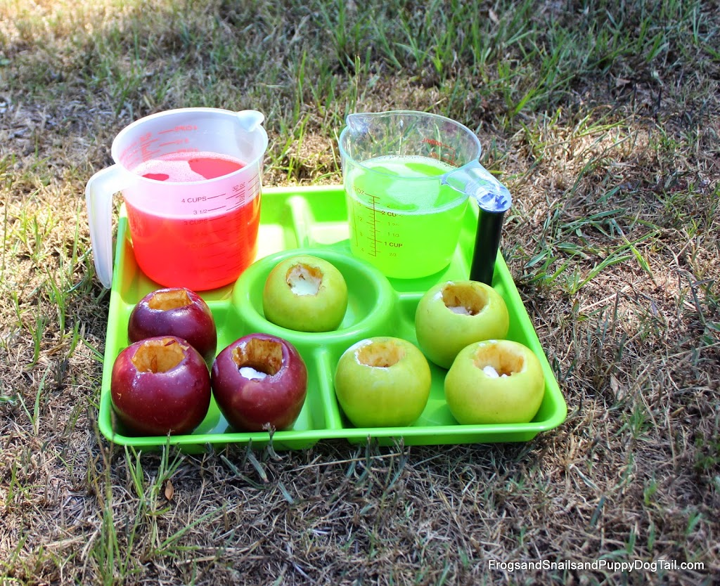 Apple Volcanoes Science for Kids