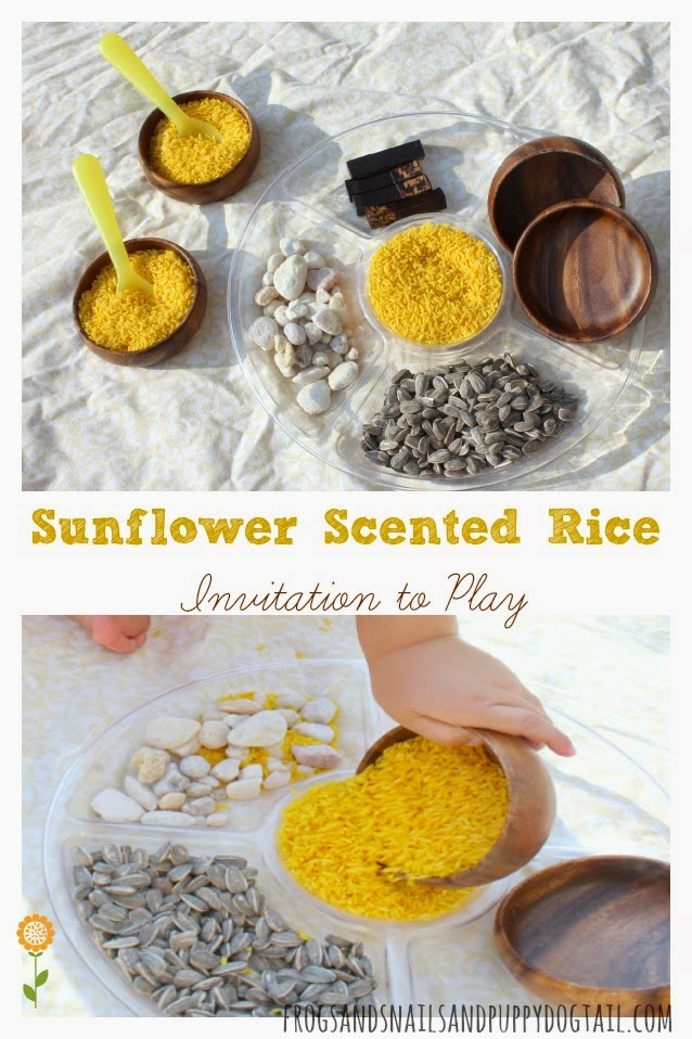 Sunflower Scented Rice Invitation to Play