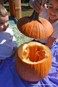 Pumpkin Investigation and Sensory Play with Cinnamon Sprinkle Goop by FSPDT