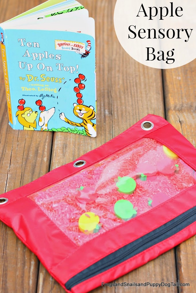 Ten Apples Up on Top Apple Sensory Bag on FSPDT