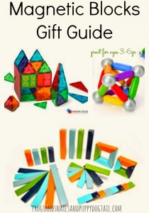Magnetic Blocks Gift Guide
