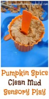 Pumpkin spice clean mud play recipe