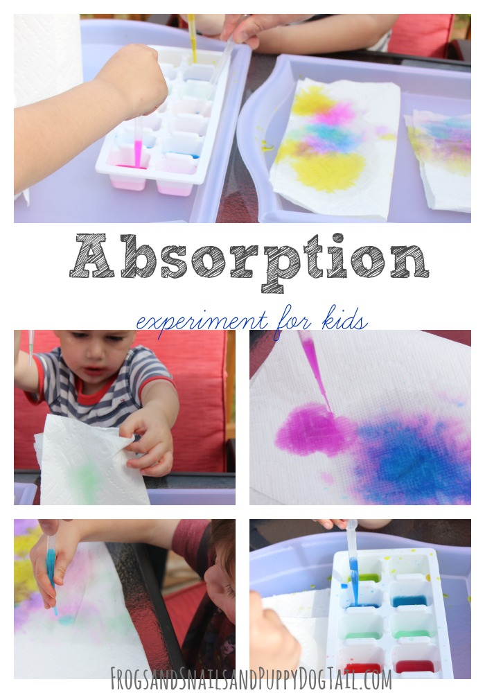 Absorption Experiment for Kids