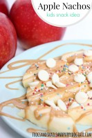 Apple Nachos Kid Snack Idea