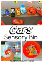 Cars Sensory Bin for Kids