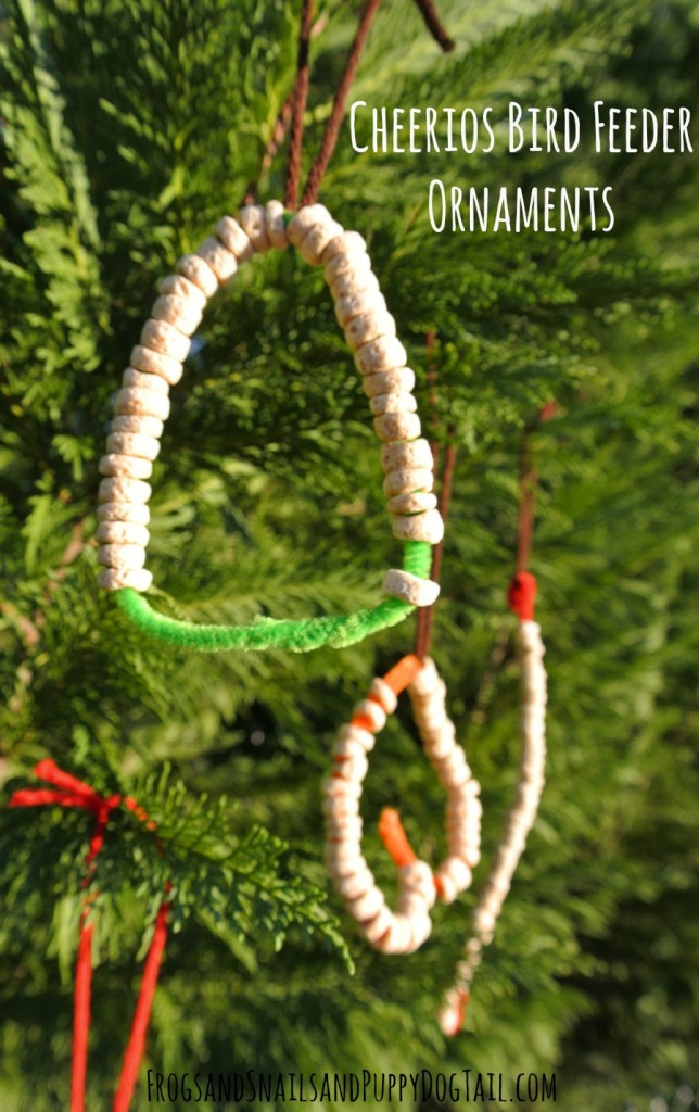 Cheerios Bird Feeder Ornaments