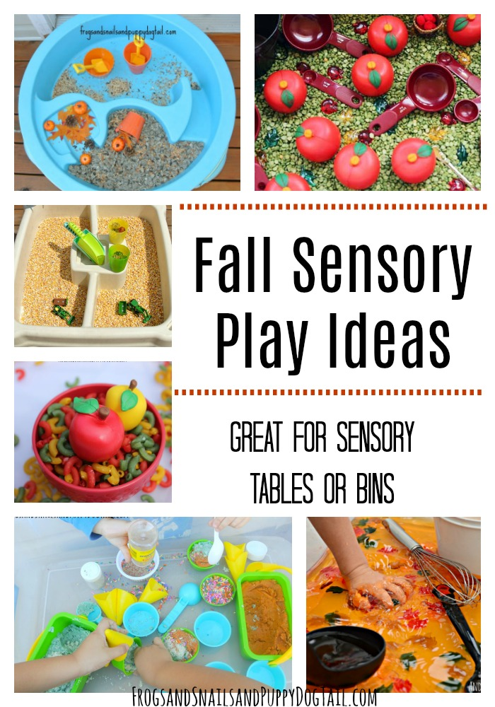 Fall Sensory Play Ideas great for sensory tables or bins