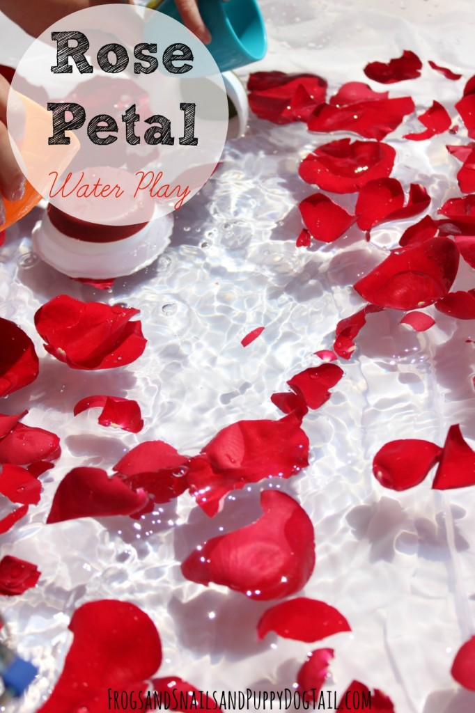 Rose Petal Water Play for Kids