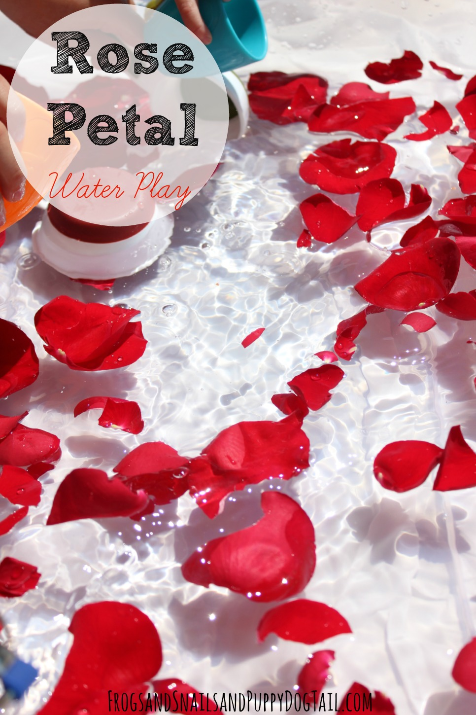 Rose Petal Water Play FSPDT