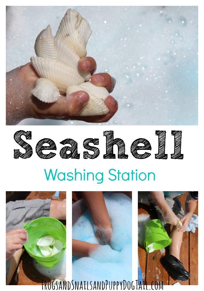 Seashell Washing Station for Kids
