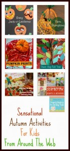 Sensational Autumn Activities For Kids From Around The Web by FSPDT