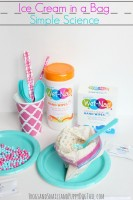 simple science for kids ice cream in a bag
