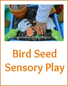 Take Everyday Toys And Turn Them Into A Sensory Bin