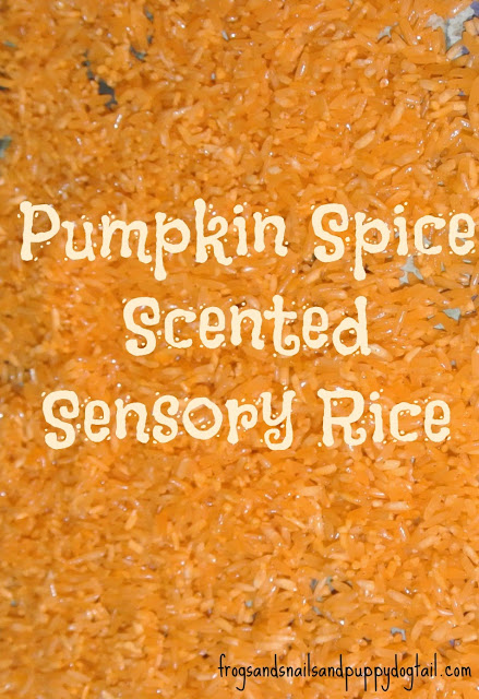 Pumpkin Spice Sensory Rice Recipe