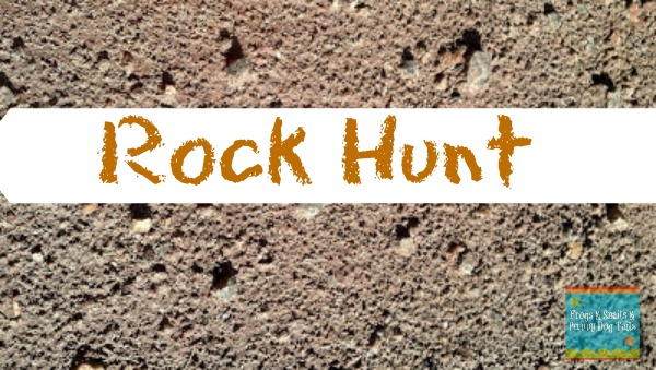 Going on a ROCK HUNT is great outdoor fun!