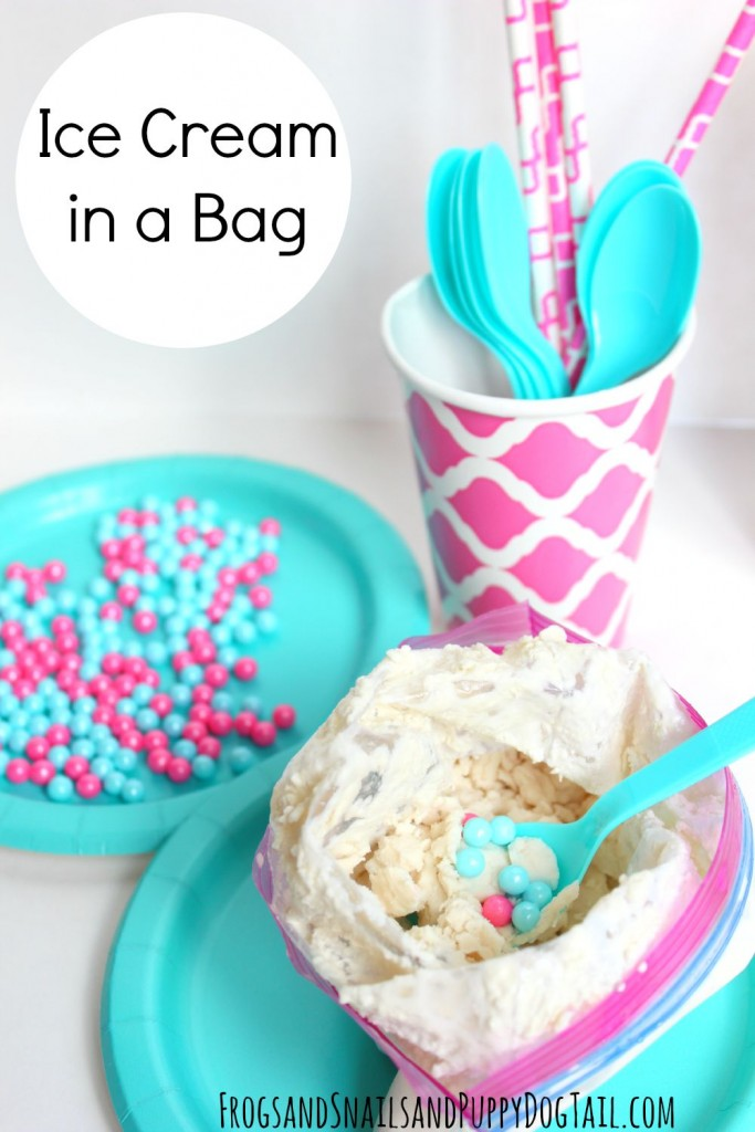 Ice Cream In A Bag Recipe