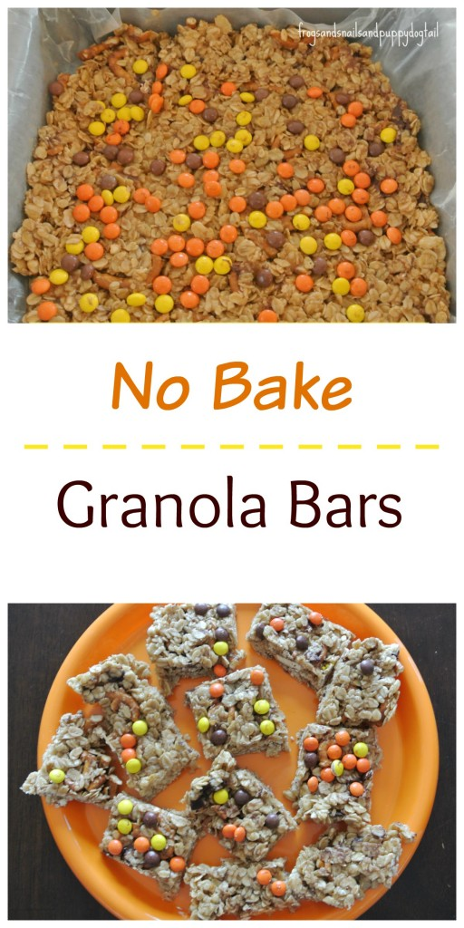 No Bake Granola Bar Recipe