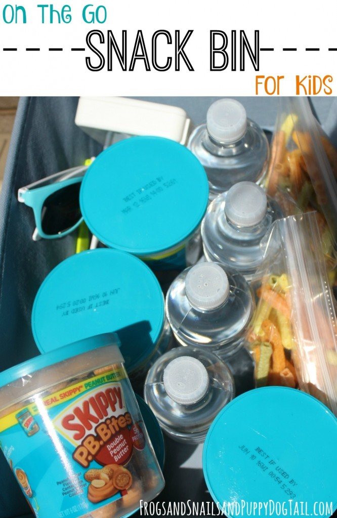 on the go snack bin for kids