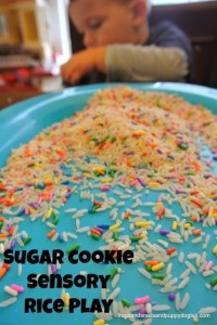 Sugar Cookie Rice {play activity} Sensational Winter Sensory Play