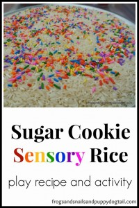 Sugar Cookie Rice { play activity} Sensational Winter Sensory Play