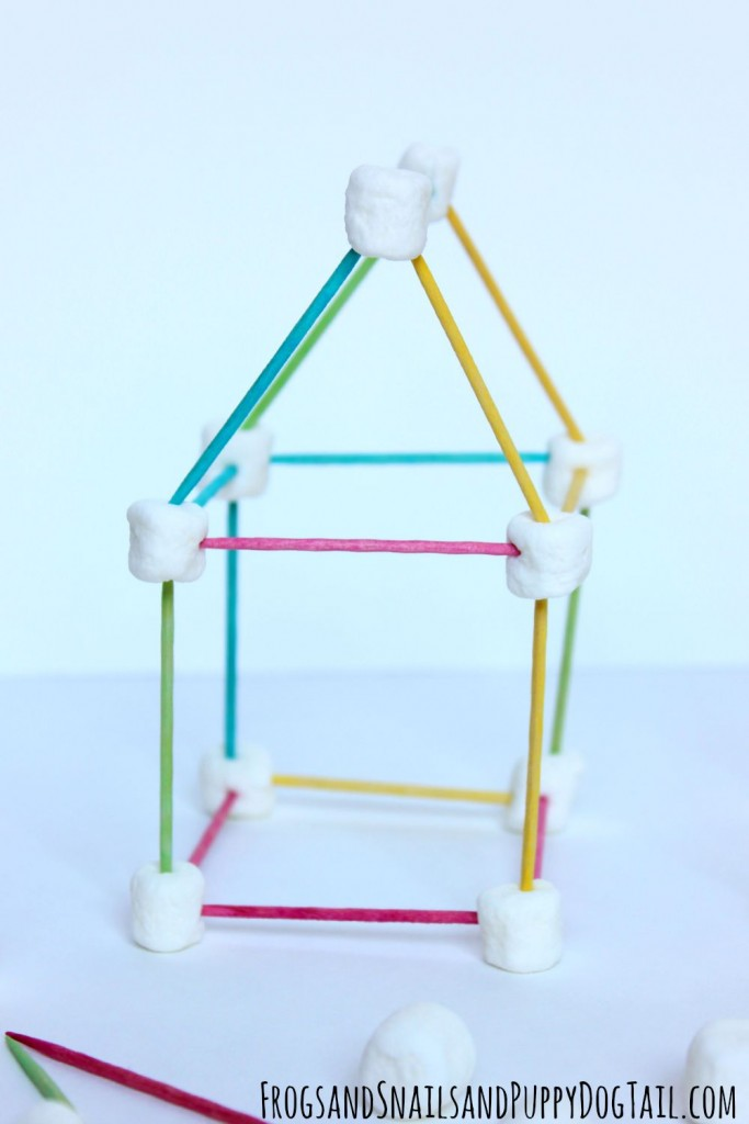 toothpick and marshmallow building