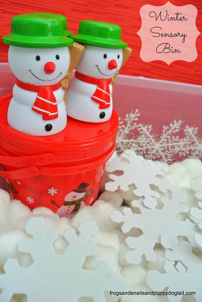 Winter Sensory Bin {great for multiple ages}